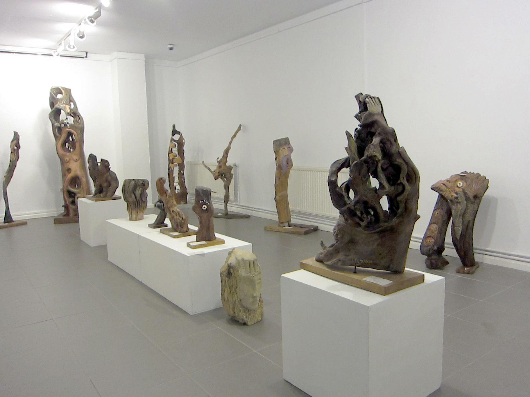 manuel-pardo-museo-da-fonsagrada-2